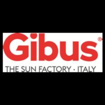 gibus-logo-300x300